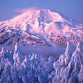 Mount Bachelor Ski Resort