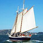 Sail Around. Test a Mattress. Sure.