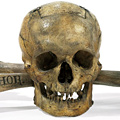The Skull From Skull and Bones at Auction