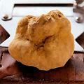 White Truffles at Cecconi's