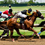 The Season Opens at Lone Star Park