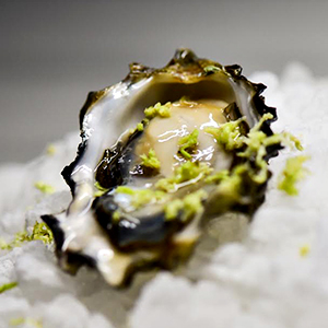 Megu's Got a Pop-Up Oyster Bar, and You Should Go to It