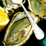 These Are the Oysters You Require