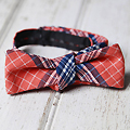 Reversible Bow Ties from The Common