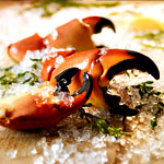 It's Stone-Crab Season. Rejoice.