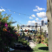 A Beer Garden Grows in the Arts District