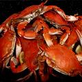 La Tache Crab Boil in Andersonville