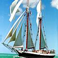 A Rum Tasting at Sea