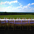 Dining in the Middle of a Farmer's Field