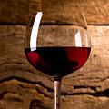 Tasting Georgian Wines at Biondivino