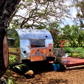 An Airstream. Wild Horses. Hawaii.