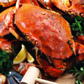 Unlimited Blue Crabs and Beer in Chelsea
