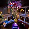 Cafe Wa s Gets a Tree