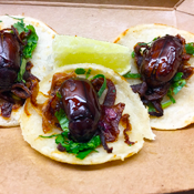 Beetle Tacos. Because You've Tried the Other Kinds.