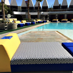 Palms Pool & Dayclub, Palms