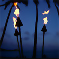 A Tiki-Themed Bacon Party in VaHi