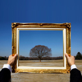 Turning Your Photos into Fine Art