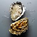 Obama's Oysters Delivered
