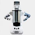 A Robot Servant