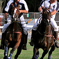 The Second Annual Manhattan Polo Classic