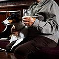 Beer. Puppies. Go.
