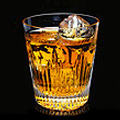Scotch Tasting at Hollywood Vine