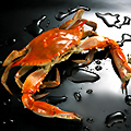 South Beach Crab Leg Party