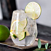 This App Is Obsessed with G&Ts