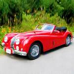 Ferraris and Bentleys. In Rockville.