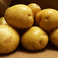 Mashed Potato Eating Contest