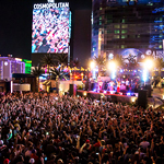 """And They Call It... """"Vegaschella"""""""
