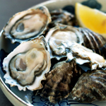 Everywhere You Look: Oysters