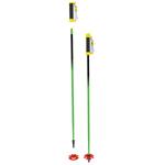 Modular Ski Poles from Char