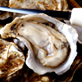 Hi. It's Summer. Have Some Oysters.