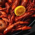 Crawfish Boils Return to Acadiana