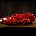 UD - Three Courses of Sweet, Sweet Lobster