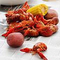 Crawfish Boil for New Orleans
